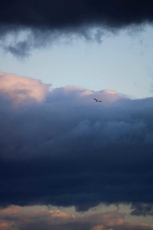 台風の空1