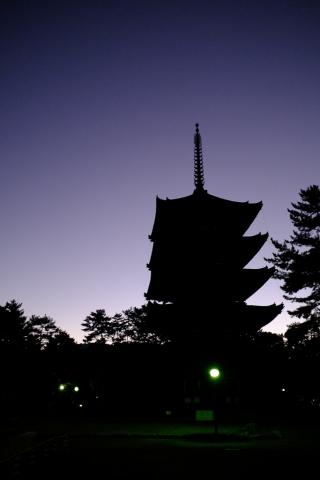 元旦の五重塔