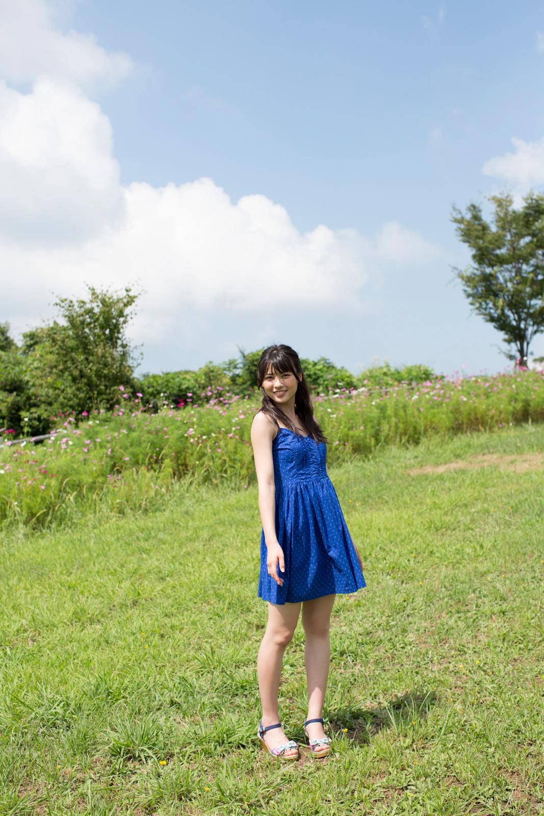 PINKのコスモス 青のワンピ 矢島舞美