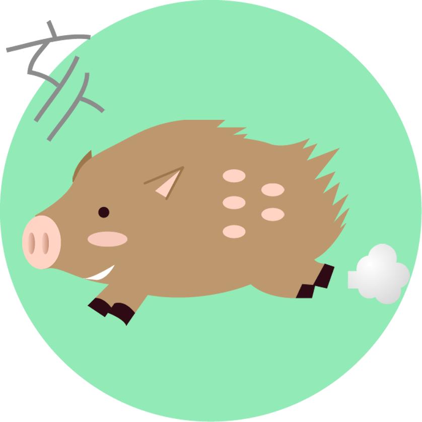 平成31年 猪