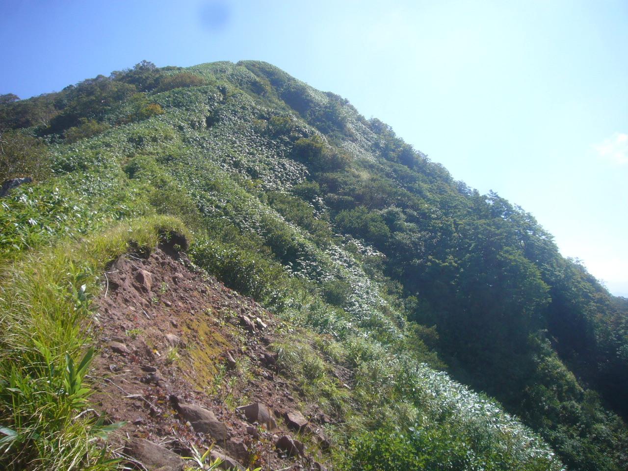 経ヶ岳頂上直下 H27.9.24