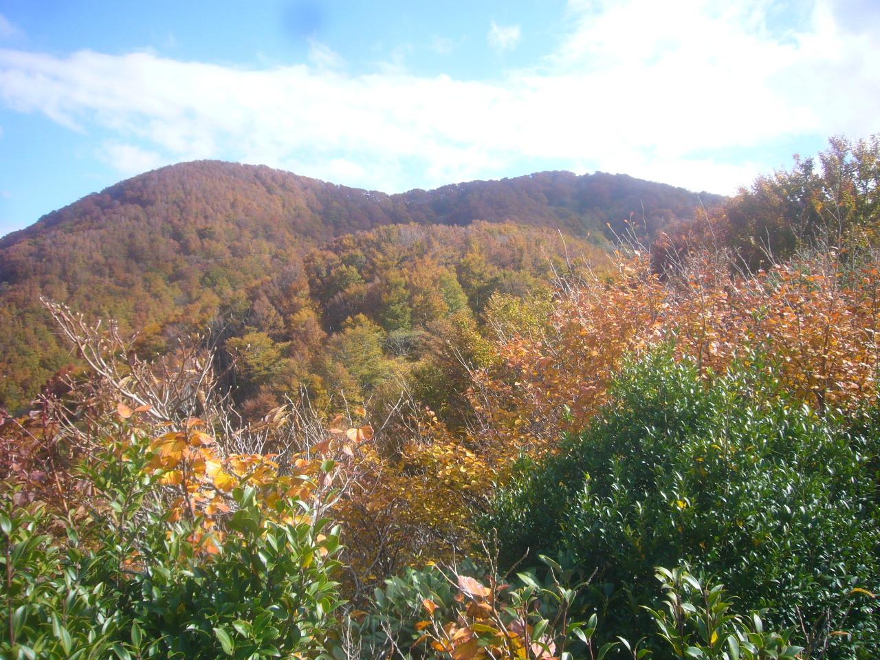 萌える山 H30.11.03