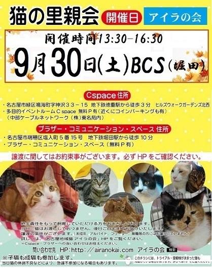 poster_2017_9small300.jpg