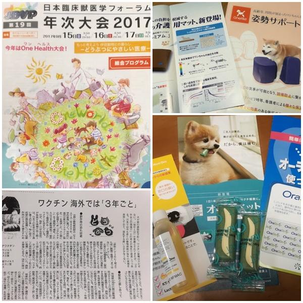 2017-9-17-1.jpg