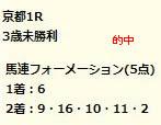 dr217_1.jpg