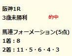 dr223_1.jpg