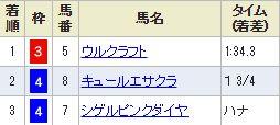 kyoto5_1013.jpg