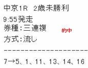 main129.jpg