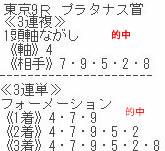 sy1013_1.jpg