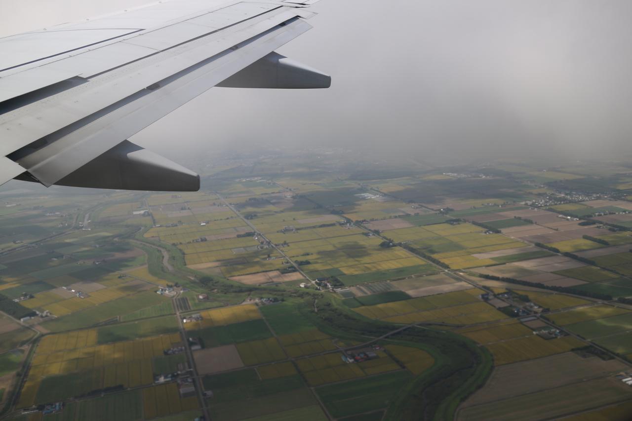 飛行機から