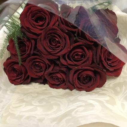 181105深紅の薔薇