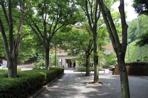 0260:徳島県立文書館 文書館への並木道②