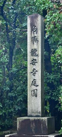 DSC_龍安7565_01