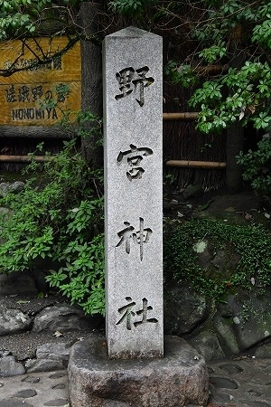 DSC_野宮7732