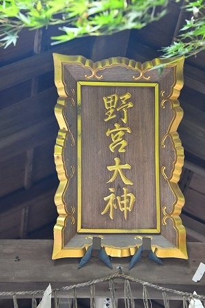 DSC_野宮7739