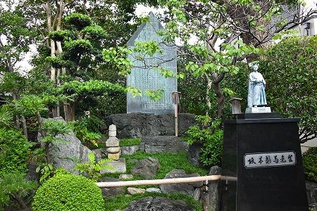 DSC_黄桜7841