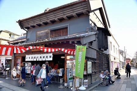 s-栃木秋祭祭DSC_9501_01