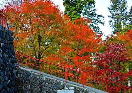 s-御岳山DSC_9701_01