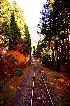 s-御岳山DSC_9734_01