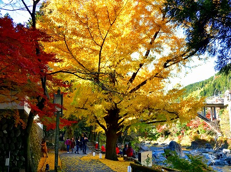 s-御岳山DSC_9750_01