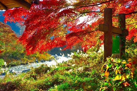 s-御岳山DSC_9802_01