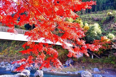 s-御岳山DSC_9814_01