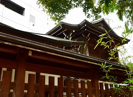 s-鳩の森DSC_0844_01