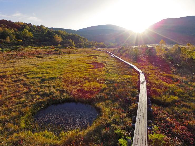 日没の浄土平湿原