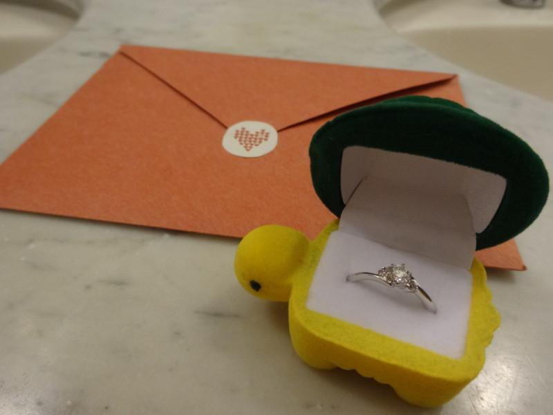 プロポーズのカメ