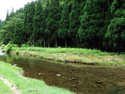 ktbus-hirogawara-3.jpg