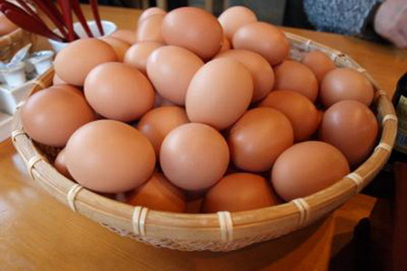 Chickens egg (1)