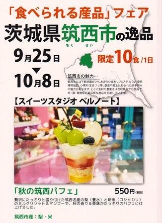 201709chikusei-poster1.jpg