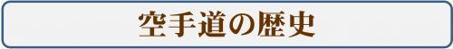 繝舌リ繝シ・育ゥコ謇矩%縺ョ豁エ蜿イ・雲convert_20170915134850