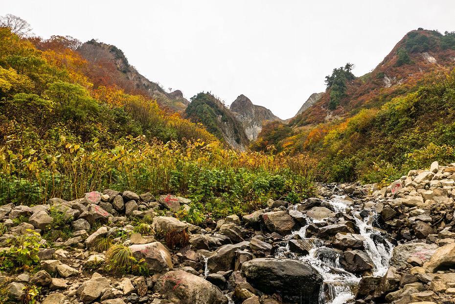 2018.10.15雨飾山の紅葉 1 (11)