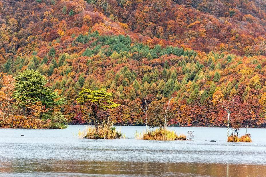 2018.10.27曽原湖1 (4)