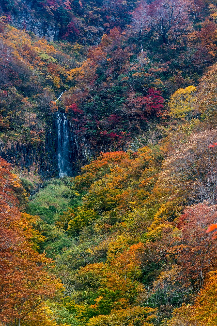 2018.10.29田子倉湖1 (8)