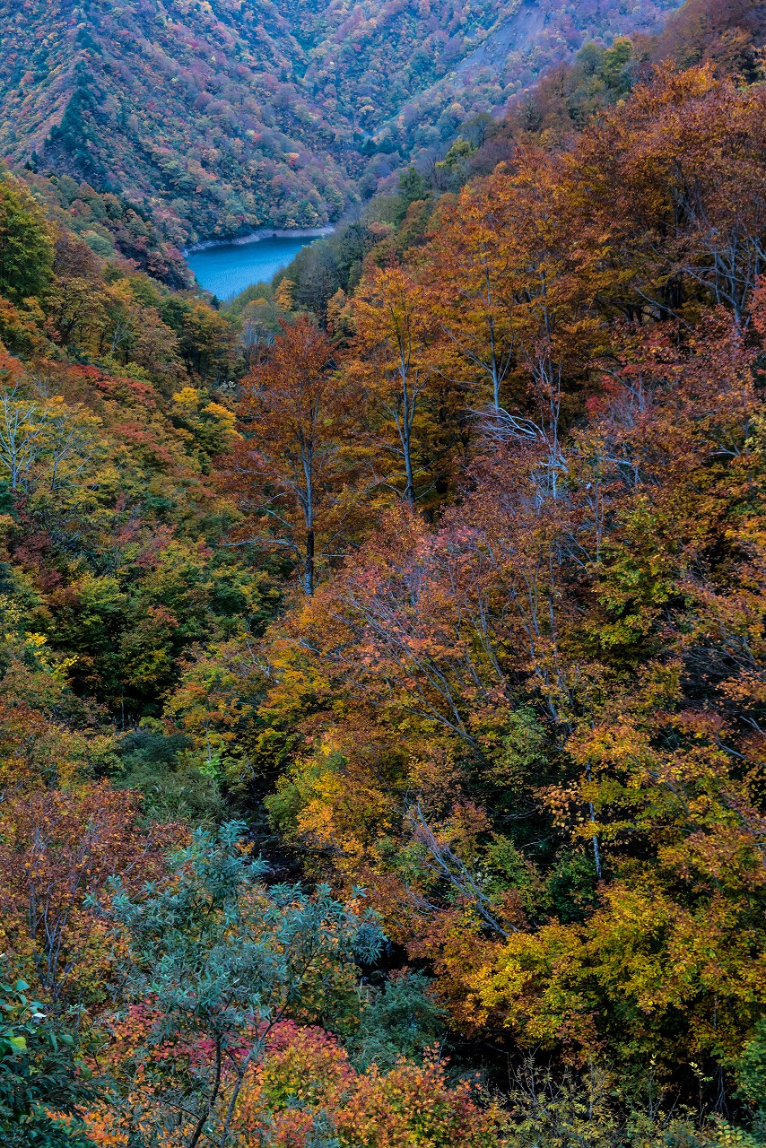 2018.10.29田子倉湖1 (4)