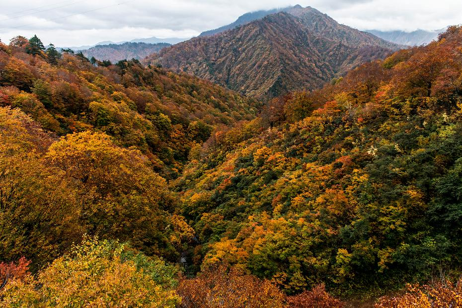 2018.10.29田子倉湖1 (1)