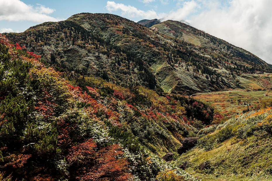 2018.09.28 白山 アルプス展望歩道 紅葉 2 (9)