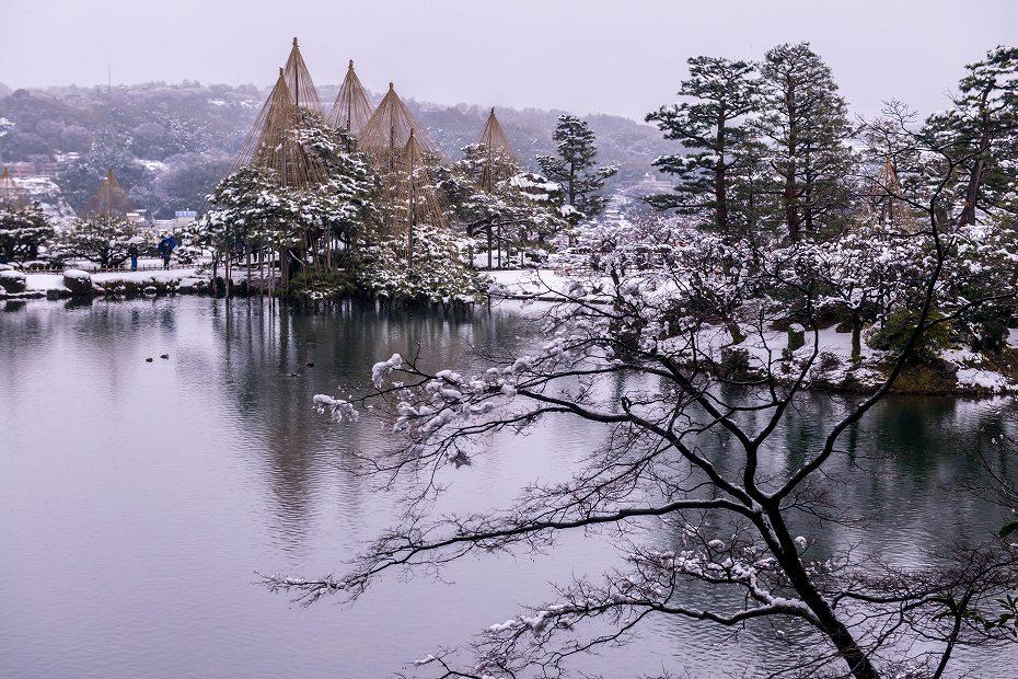 2019.01.21兼六園の雪景色 1 (6)