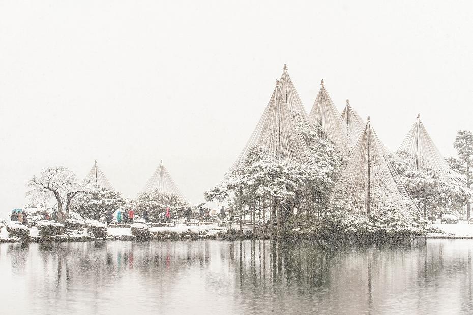 2019.01.26兼六園の雪景色 1 (97)