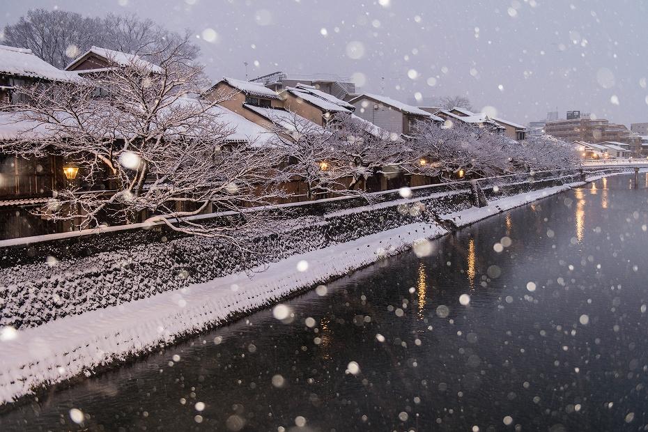 2019.01.27主計町の雪景色 1 (5)