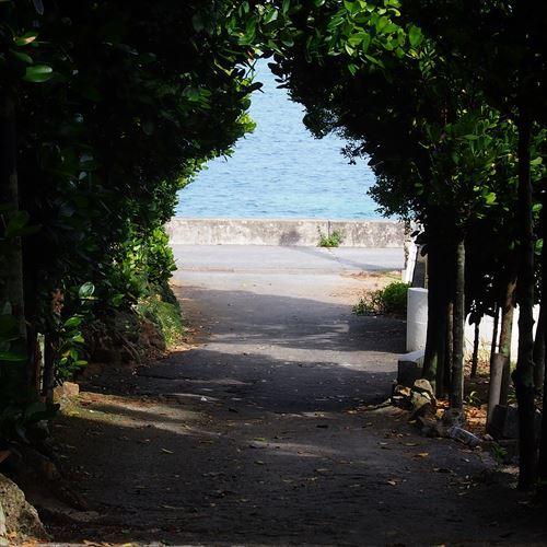 ゆうブログケロブログ沖縄2017 (56)