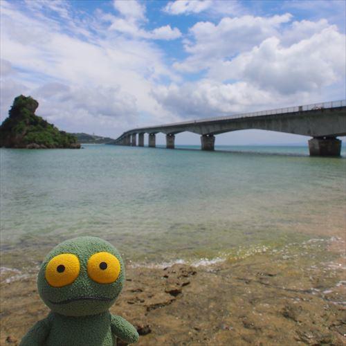 ゆうブログケロブログ沖縄2017 (66)