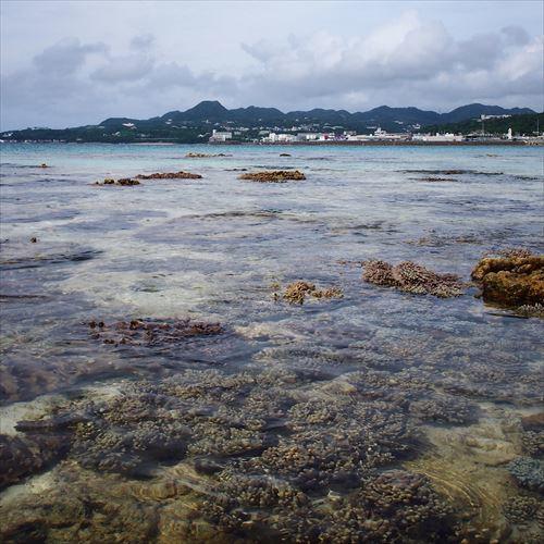 ゆうブログケロブログ沖縄2017 (73)