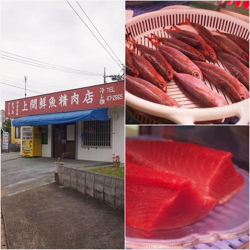 ゆうブログケロブログ沖縄2017 (78)