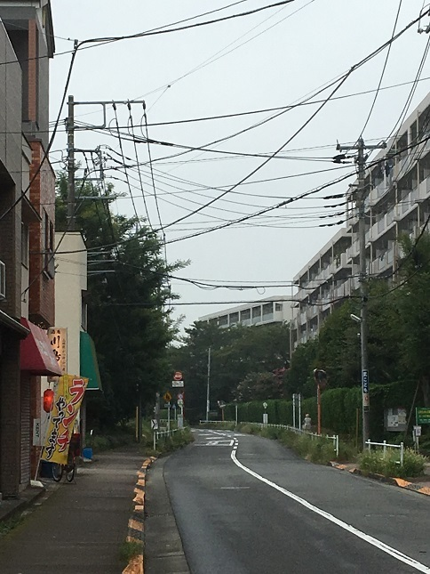 kawashimaya11.jpg