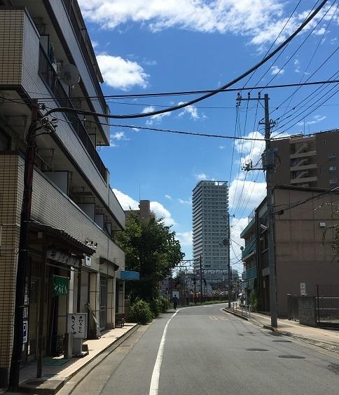 s-kikuya18.jpg
