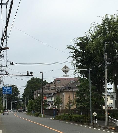 yoshifuji11.jpg