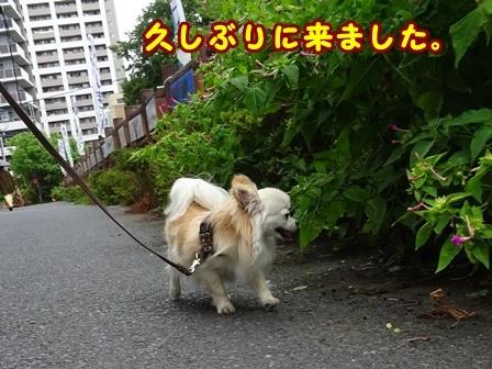 blog9827a.jpg